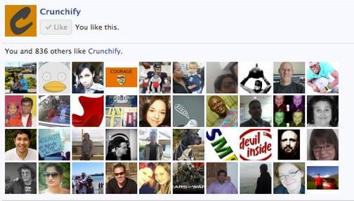 facebook-member-widget