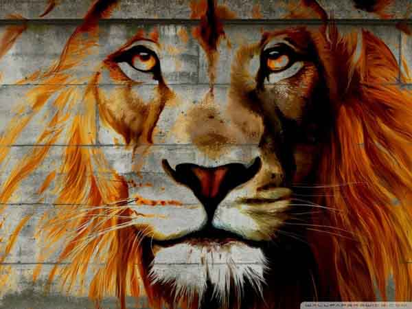 lion_29-wall