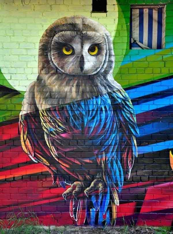 owl-graffiti-work