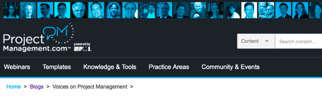 voices_on_project_management-1