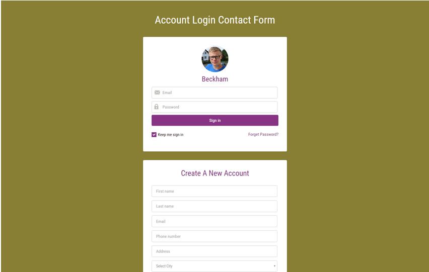 Account Login Contact Form Widget Responsive Widget Template