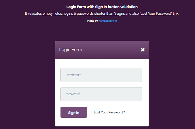 Beautiful CSS Login Form