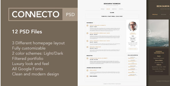 Connecto – Modern vCard Resume PSD Template