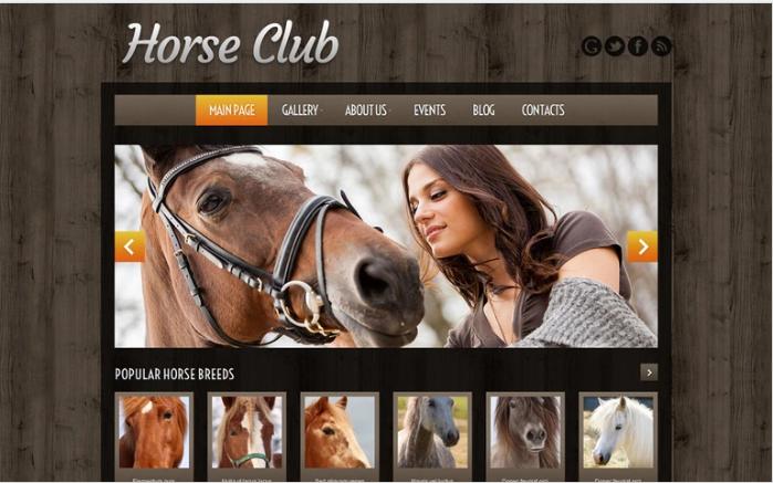 Horse Breeding Farm WordPress Theme