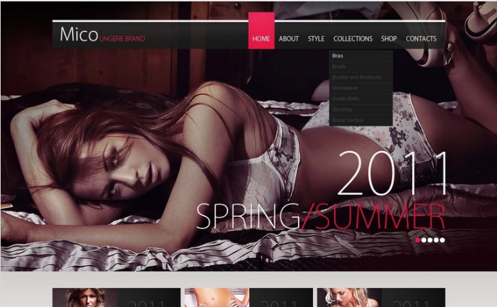 Lingerie PSD Template