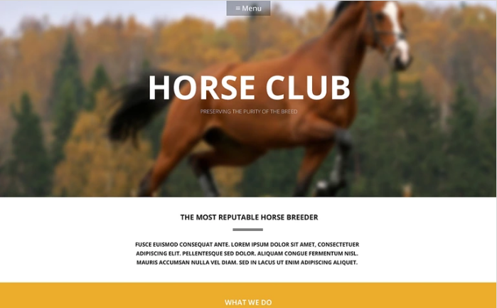 Luxury Horse Breed Care WordPress Theme