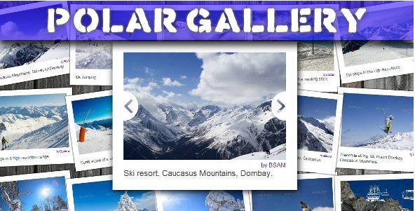 Polar Gallery