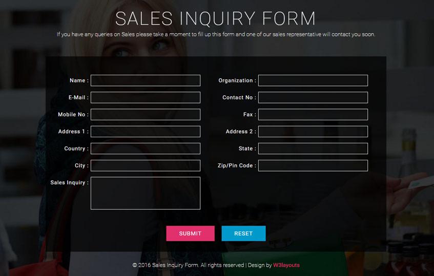 Sales Inquiry Form Responsive Widget Template