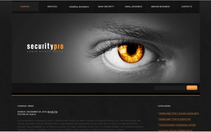 Security Psd Design Templates