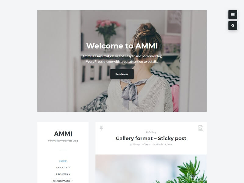 Ammi Minimalist WordPress Themes