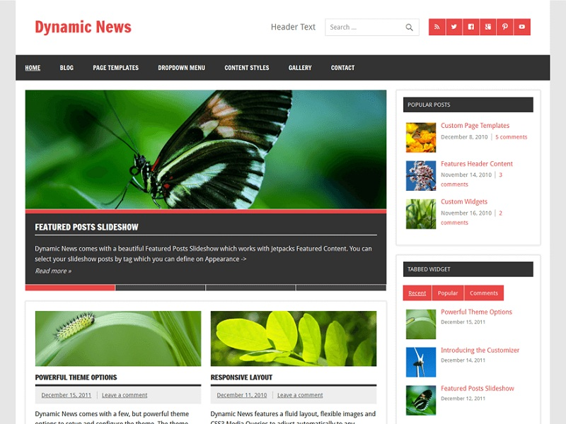 Dynamic News Lite
