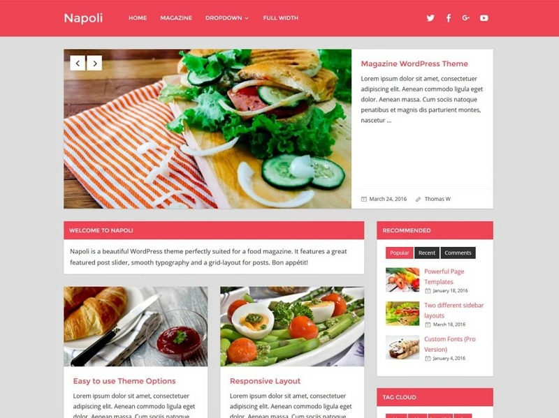 Napoli best WordPress Themes