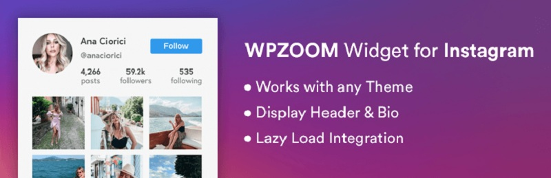 WPZOOM Widget for Instagram