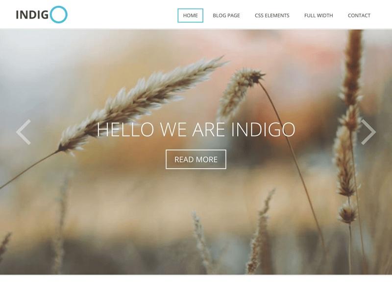 Indigo Lite Free Environmental WordPress Themes