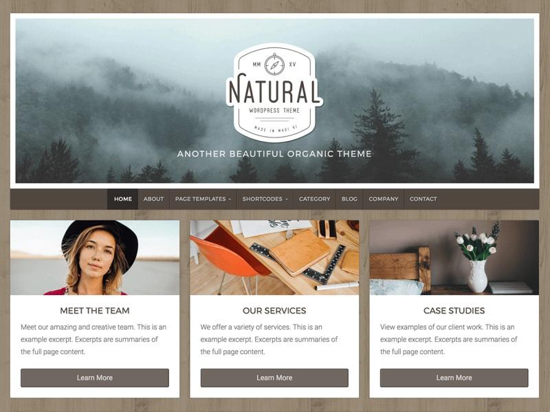 Natural Lite Free Environmental WordPress Themes