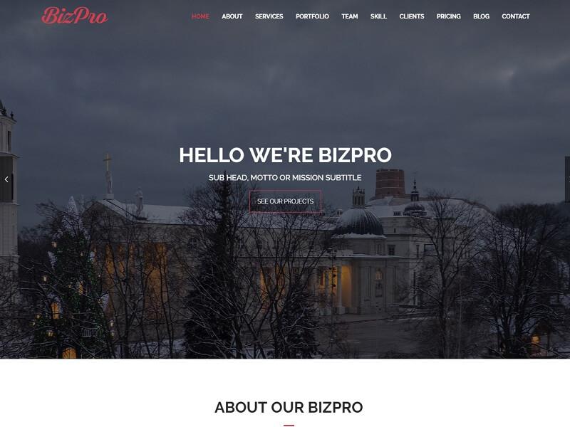 BizPro