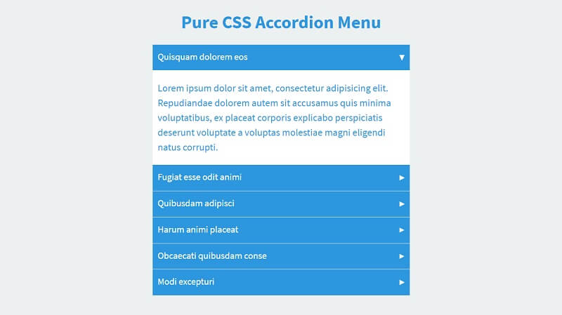 Pure CSS Accordion Content With Animation