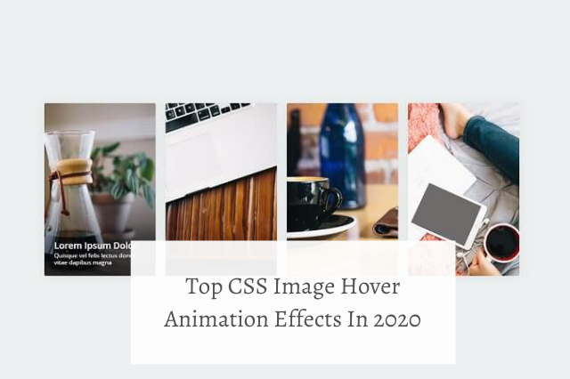 Top CSS Image Hover Animation Effects