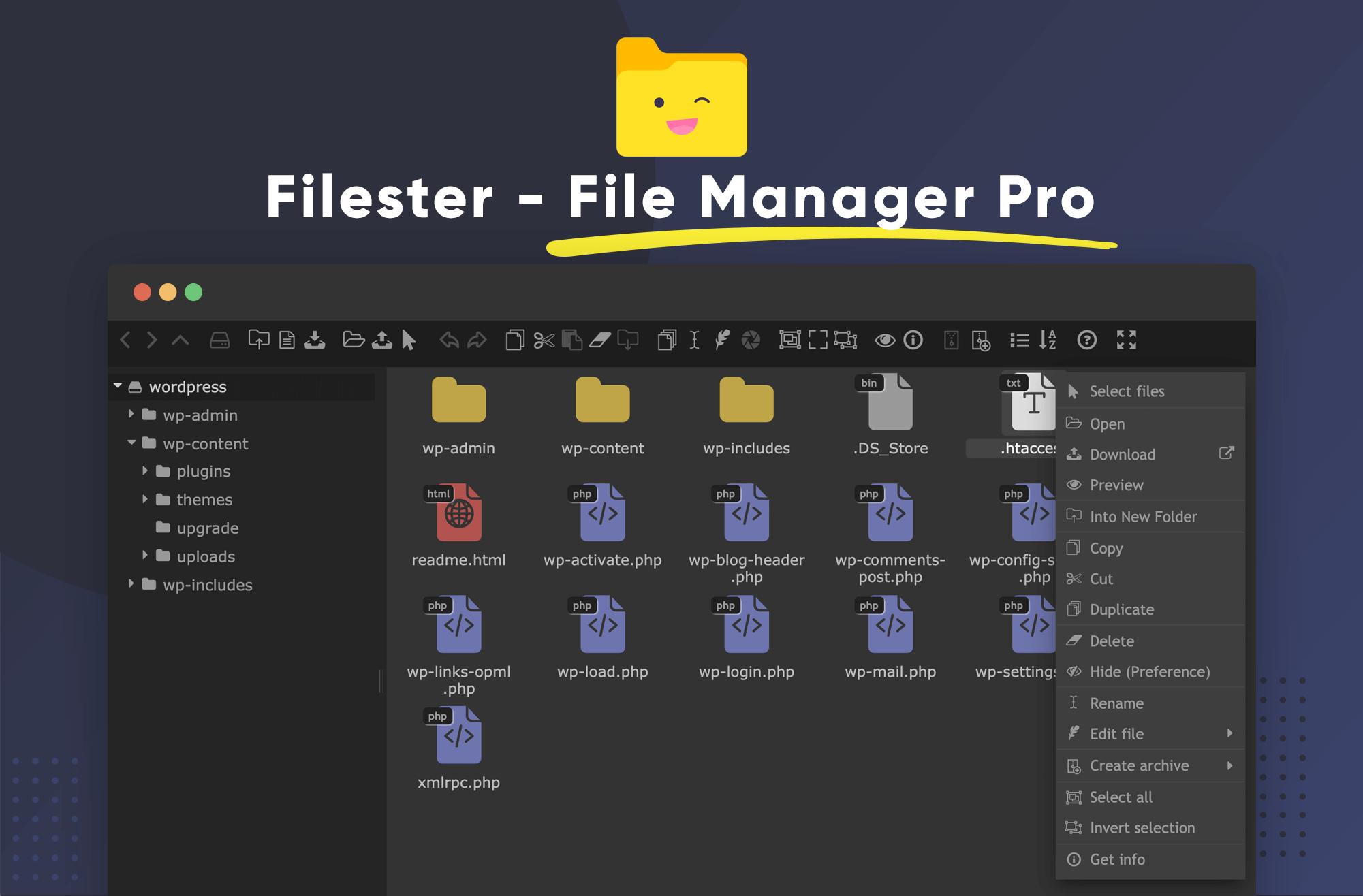Filester Blog Banner