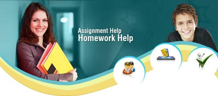 How to Build Assignment Help Websites