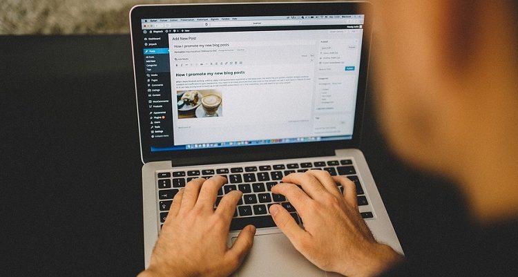 Choosing Your WordPress Theme