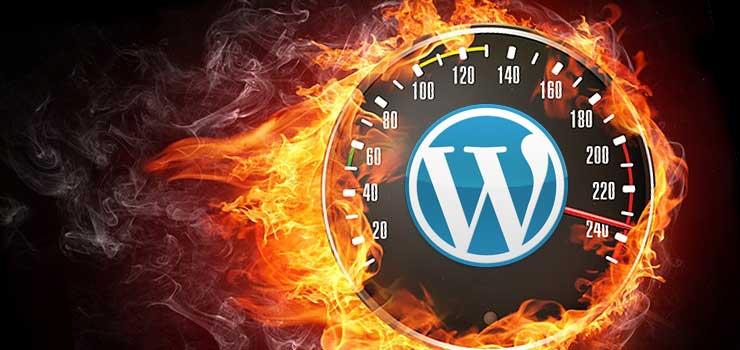 Best WP Plugins for Content Optimization