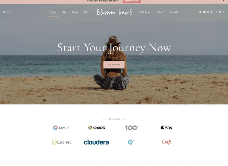 blossom travel best Free WordPress Themes