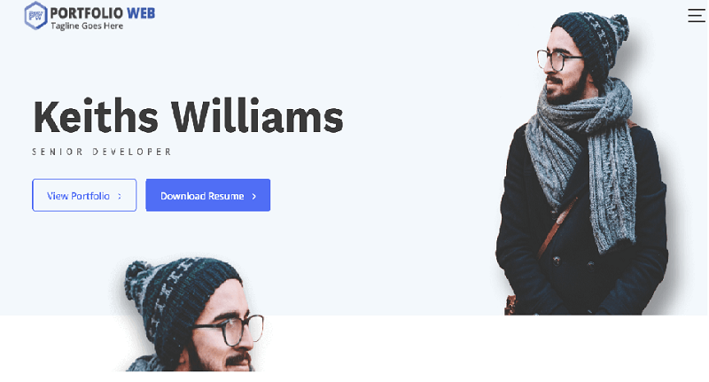 portfolioweb best Free WordPress Themes