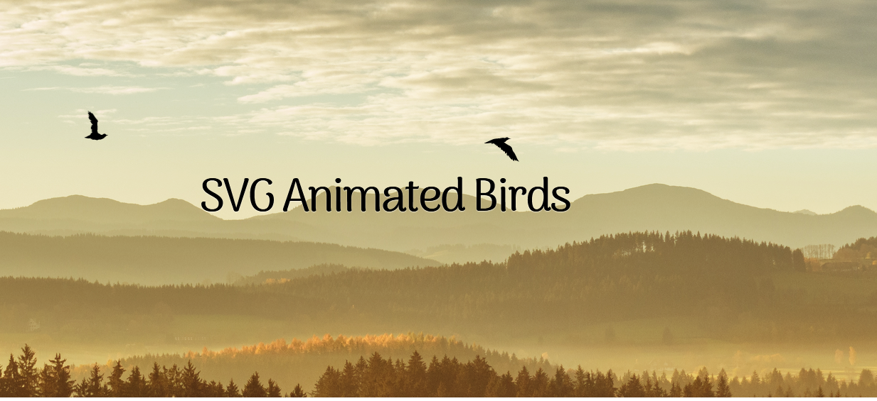 Animated SVG Birds