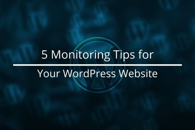 5 Monitoring Tips for Your WordPress Website