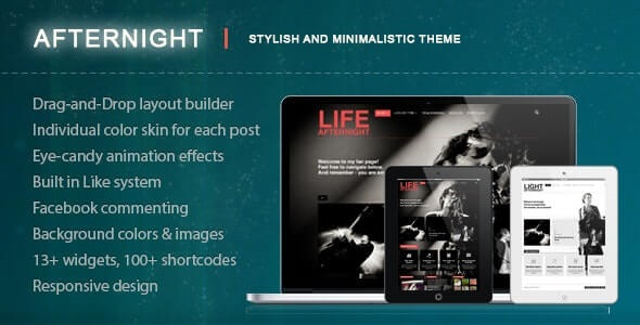 Afternight Best WordPress Themes for Nightclubs