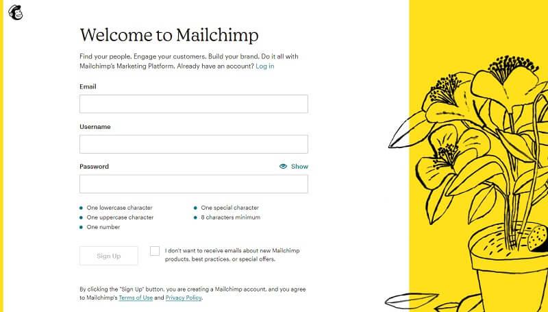 Mailchimp account