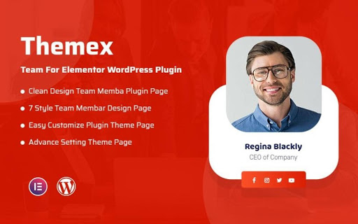 Themex Team For Elementor WordPress Plugin