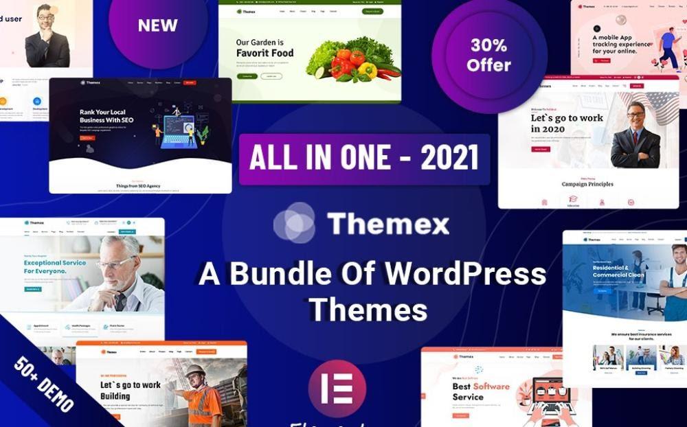 Themex WordPress theme