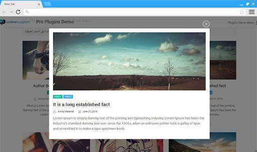 The Modal Popup View with Detailed Post