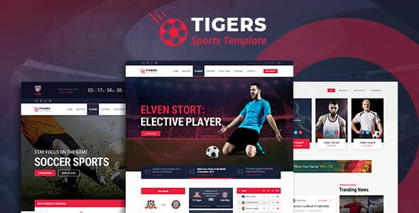 Tigers Sports HTML Template